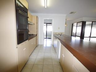NEWLY RENOVATED 3 x 1 HOME!! - Beechboro