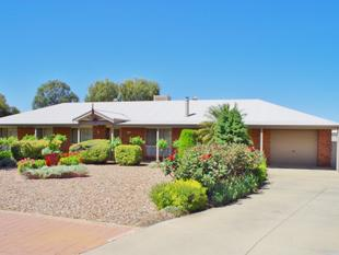 Rural Living, In Town Convenience - Paringa