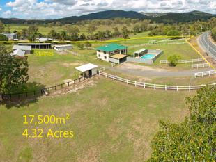 Beautiful Horse Property Must Sell! - Wolffdene