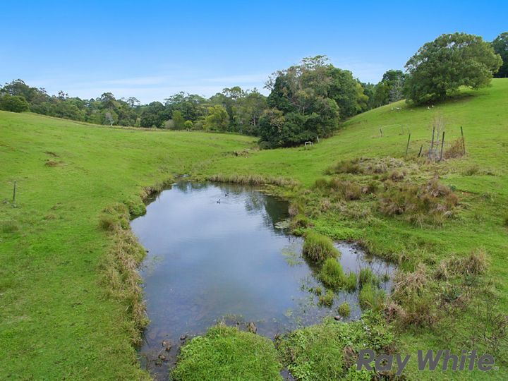 171 Burgum Road, North Maleny, QLD