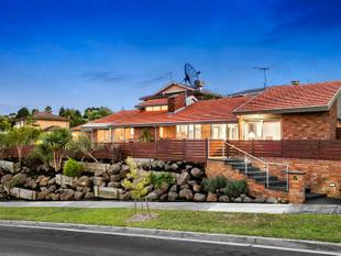 Low Maintenance with Multiple Living Zones. - Templestowe