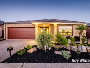 ARCHITECTURAL EXCELLENCE IN SELANDRA RISE - Clyde North