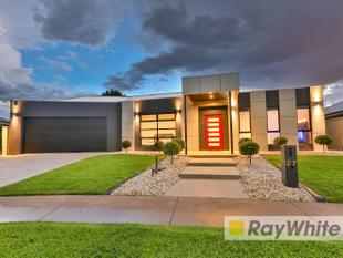 Exquisite Exceptional Perfect - Mildura