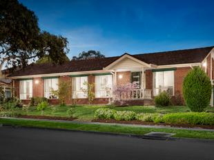 Sun-Soaked Family Dimensions Meters From Parkland - Rowville