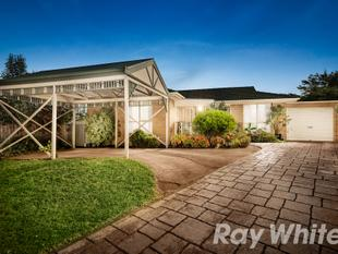 Great Location Beautifully Presented. - Wantirna
