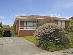 IDEAL LOCATION - Bundoora