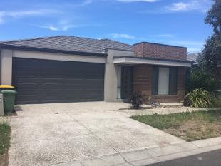 Brand New and a great location! - Craigieburn