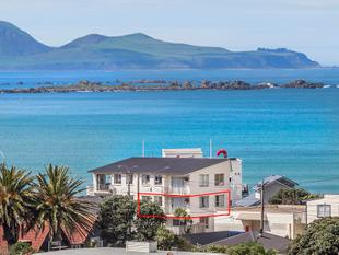 Great opportunityoverseas vendor says sell, sell! - Lyall Bay