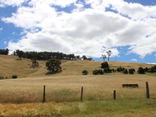 312 Acres of Hills, Valleys, Sweeping Views and River Frontage - Bridgetown