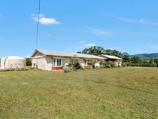 WISHLIST FULFILLED 4 Bedrooms/ Granny Flat/ 4 Sheds/ Spring fed Dam/ Bore and Orchard. - Beatrice