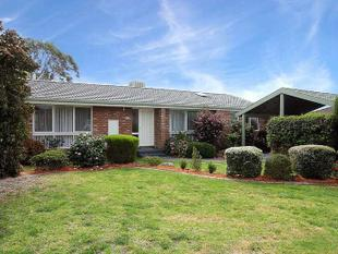 Clean and Tidy Gem - Wantirna South