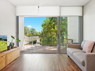 North facing with tree top views - Wahroonga