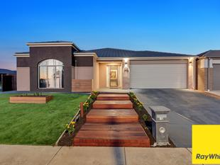 Prime Location & Loving Family Home - Tarneit