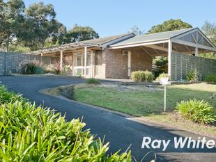 AVAILABLE NOW ! - Langwarrin