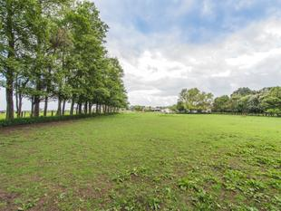 Westmere - Three Hectares of Land - Westmere